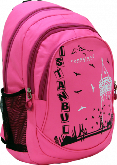 Cambridge Polo Club, Istanbul Backpack, Pink-1