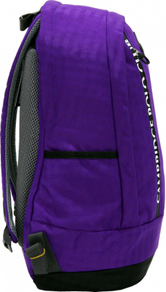Cambridge Polo Club Plcan1715, Sport & Backpack, Purple-2