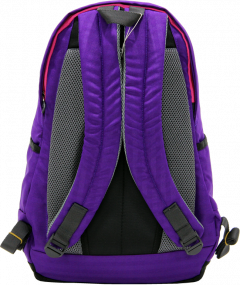 Cambridge Polo Club Plcan1715, Sport & Backpack, Purple-3