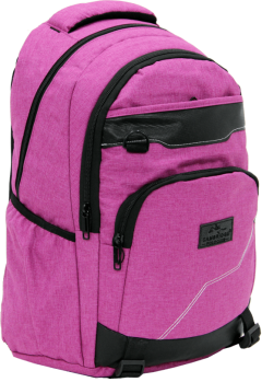 Cambridge Polo Club Plcan1685, Jeans Fabric Backpack, Pink-1