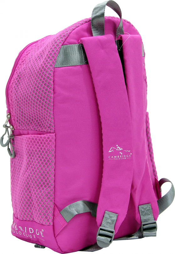 Cambridge Polo Club Plcan1655, File Backpack, Fuchsia