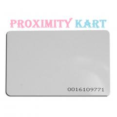 Proxımıty RFID 125 KHZ Manyetik Kart