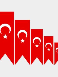 Alsancak Kırlangıç Türk Bayrağı, Alpaka – 50×200