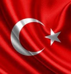 Alsancak Türk Bayrağı, Alpaka – 20×30