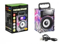 PL-4113 Fm Speaker