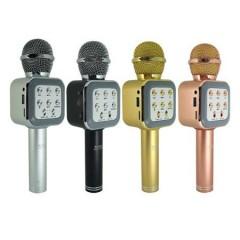 Karaoke Mikrofon Wster Ws-1818
