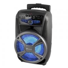 Taşınabilir Ses Sistemi (PG-415, Kablosuz Mikrofonlu, Usb Girişli)