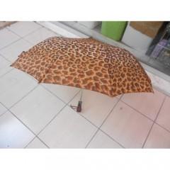 10 Telli Bayan Otomatik Şemsiye