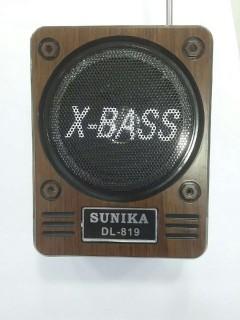 Sunika Dl-819 Portatif Amfi